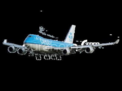 Boeing 747 Horn or Crew Alarm
